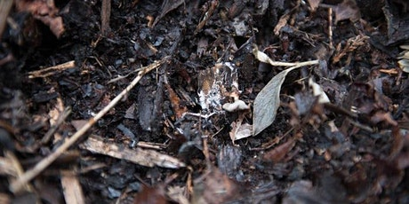 FREE Workshop:  Sheet Mulching tickets