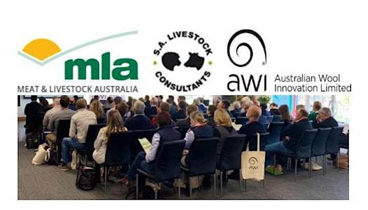 Trade Tickets - Livestock Advisor Update - Southern Australia image