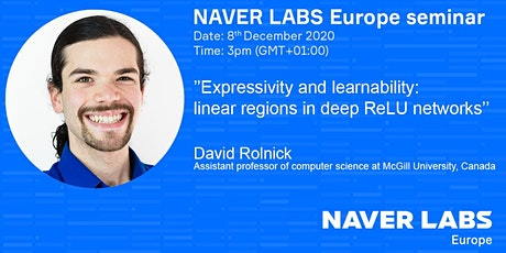 NAVER LABS Europe seminar: Expressivity and learnability tickets