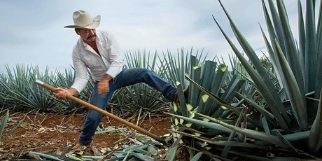 Tequila & Mezcal Festival tickets