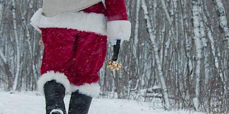 Santas Woodland Grotto tickets