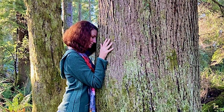 Virtual Winter Solstice Forest Therapy Walk tickets