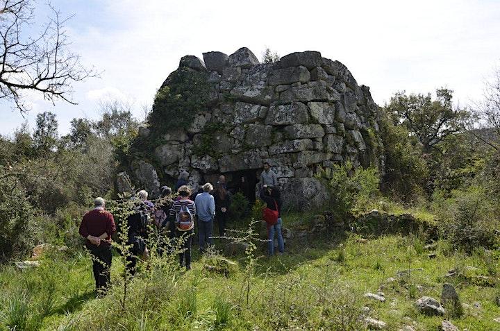 Immagine Menhir di Biru e' Concas e Nuraghe Talei
