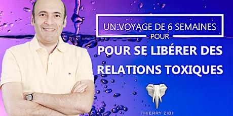 Un voyage de 6 semaines  pour SE LIBÉRER des Relations Toxiques billets
