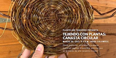 Tejiendo con Plantas: Canasta Circular de Hiedra entradas