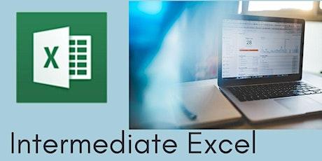 Intermediate Excel - 3 hr Zoom Workshop tickets