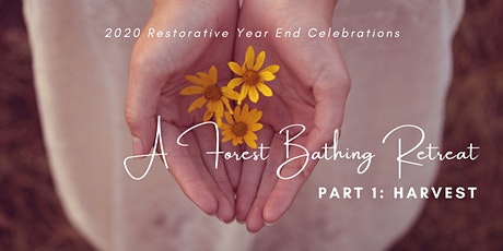 A Forest Bathing Retreat [2020 year end celebrations]: Part 1 - Harvest tickets