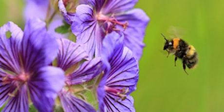 Pollinator friendly gardening tickets