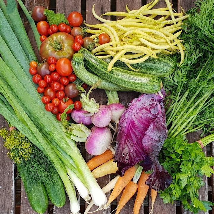 Nutzgartenplanung von der Ernte her: Bild