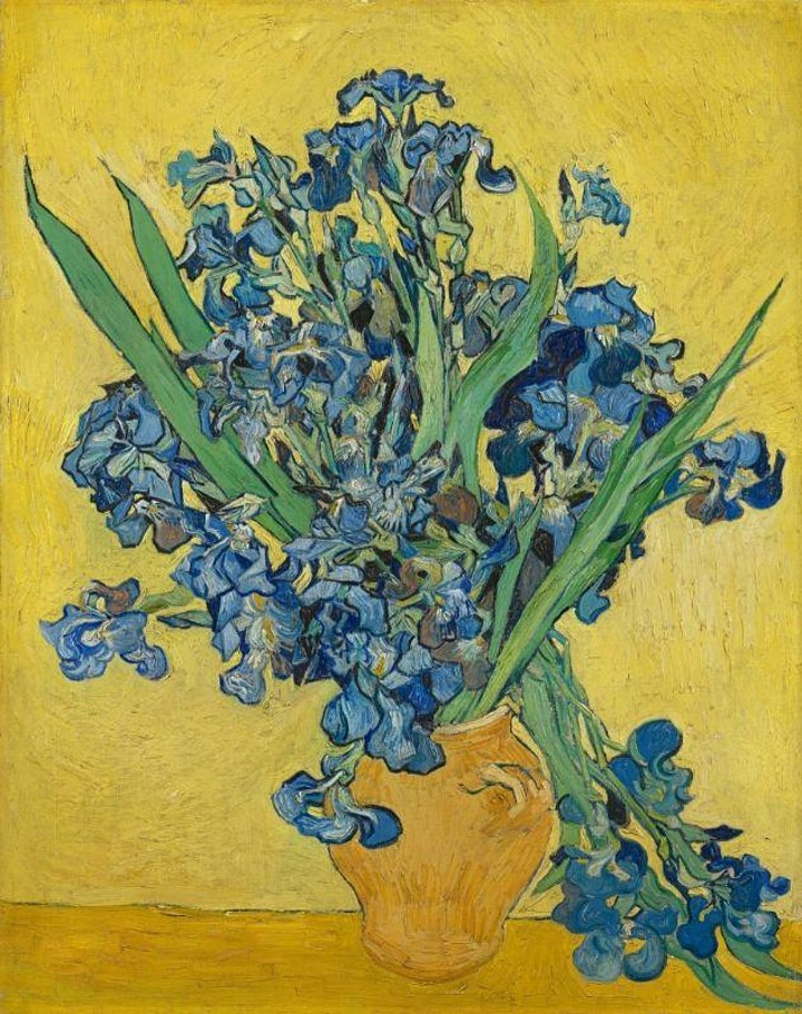 Van Gogh Museum - Amsterdam: Livestream Art Tour Program image
