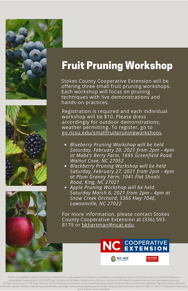 Small Fruit Pruning Workshops Blackberry Pruning Tickets Sat Feb 27 2021 At 2 00 Pm Eventbrite The annual bestplaces comfort index for the king area is 7.6 (10=best), which means it is more comfortable than most places in north carolina. small fruit pruning workshops blackberry pruning