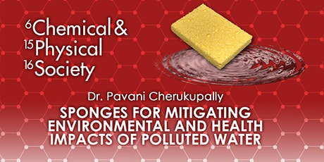 Sponges for Mitigating Environmental and Health Impacts of Polluted Water tickets