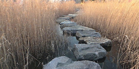 Stepping Stones in Supervision (4 workshops) tickets