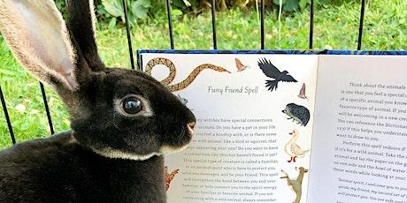 The Lore of Spring: Ostara & Rabbit Magic tickets