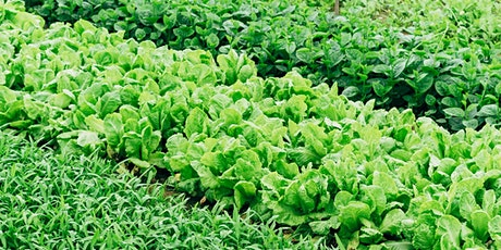 Regenerative Agriculture for the Home Garden Tickets