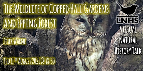 The wildlife of Copped Hall gardens and Epping Forest  by Peter Warne tickets
