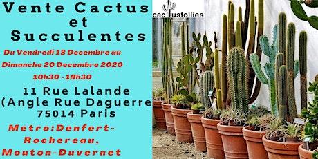 Vente Cactus et Succulentes billets