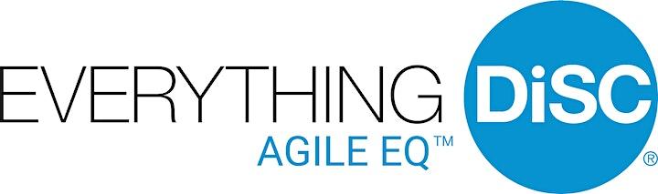 SZH Consulting Presents: DiSC Agile EQ Facilitator Training 2/3 image