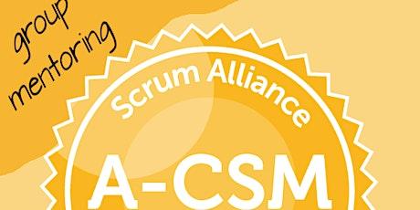Advanced Certified ScrumMaster A-CSM / ScrumAlliance -1yr mentoring - DE/EN tickets