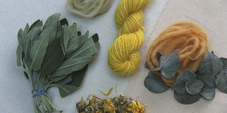 An Introduction to Natural Dyeing: Dried Plants tickets