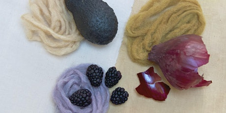 An Introduction to Natural Dyeing: Fruit & Veg tickets