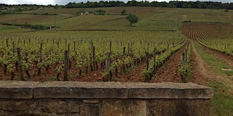 Burgundy Wine Tasting & Class tickets