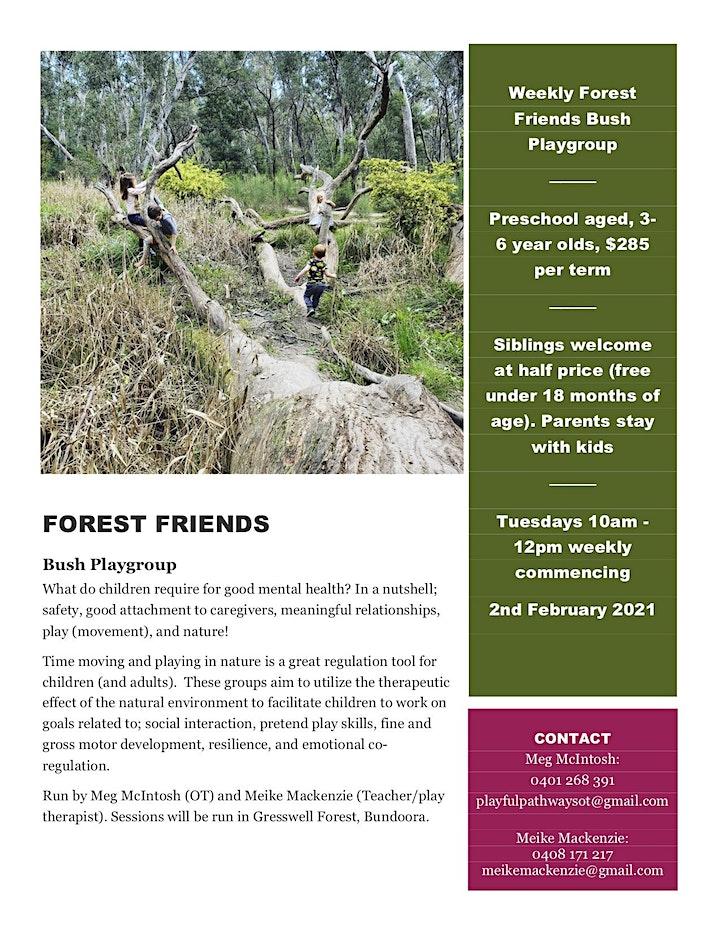 Nature based bush playgroup for 3-6 year olds image