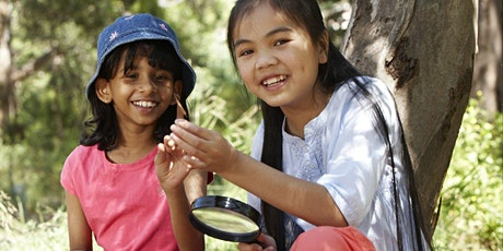 Junior Rangers Bush Detective - Bay of Islands Coastal Park tickets
