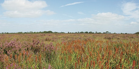 CANCELLED - Conservation Day at Drumburgh Moss tickets
