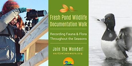 Fresh Pond Wildlife Documentation Walk tickets
