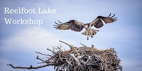 Reelfoot Lake Photo Workshop tickets