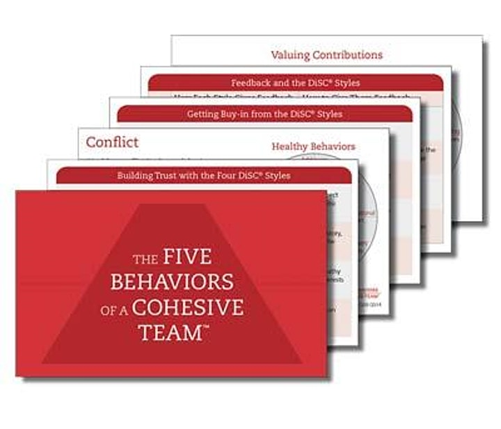 SZH Consulting Presents: Five Behaviors of a Cohesive Team Training 3/3 image