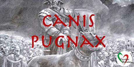 Webinar - Canis Pugnax (war dogs) tickets