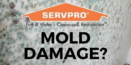 Virtual Understanding Mold in the Restoration Industry CE Class (2hr) tickets