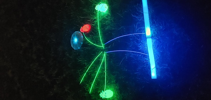 Disco Frisbee image