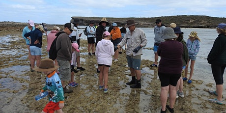 Ranger Guided Reef Ramble in Dhilba Guuranda-Innes National Park tickets