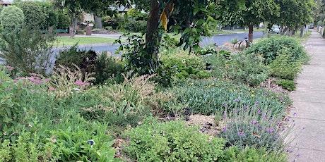 Naturestrip gardening information session tickets