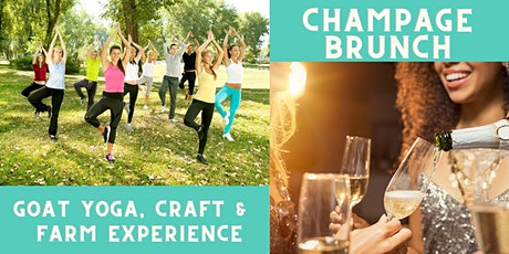 Ladies Goat Yoga & Farm Life Experience with Champagne tickets