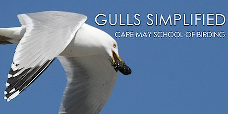 Gulls Simplified tickets
