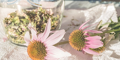 FREE: Making Herbal Tinctures & Glycerites with Betsy Miller tickets