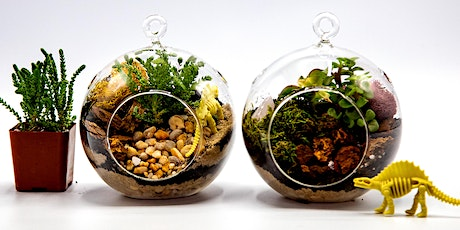 Virtual Workshop: Terrarium-making tickets