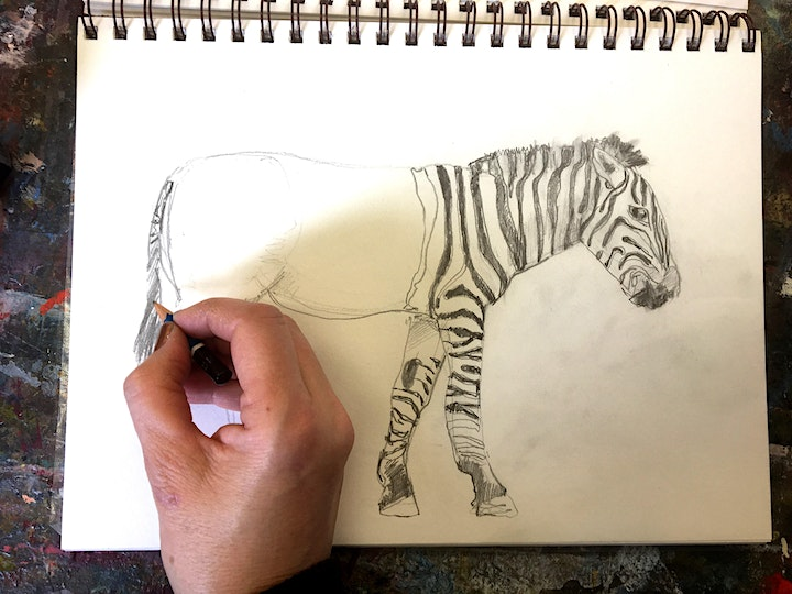 Drawing Skills - Morning and Afternoon Classes image