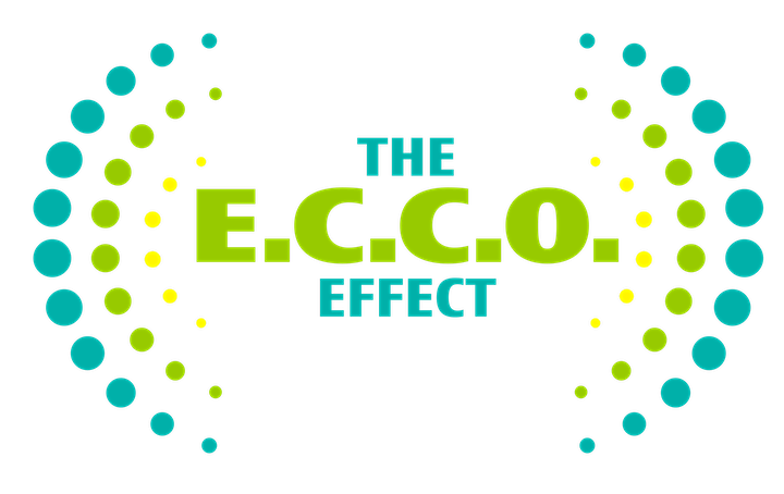 Interrupting Bias: Creating The E.C.C.O Effect In Organizations image
