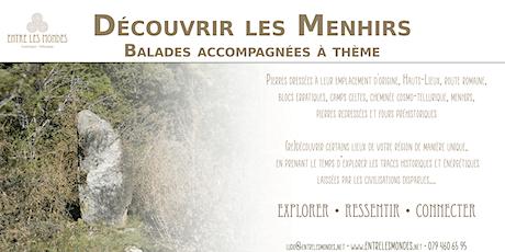 Découvrir les Menhirs - Balade accompagnée à thème tickets