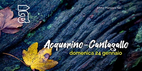 Acquerino-Cantagallo tickets