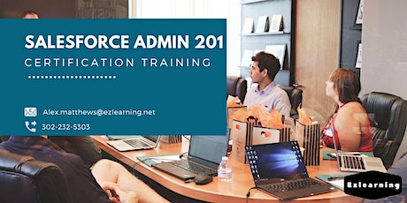 Salesforce Admin 201 Certification Training in Brooks, AB tickets