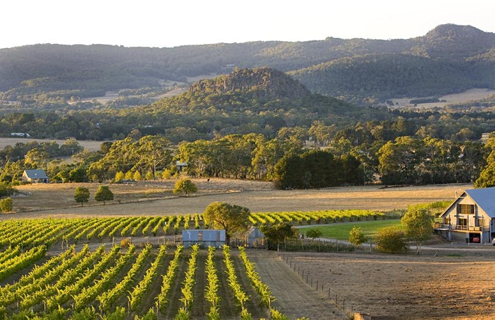 Summertime Fling 2021 - Summer Sunday Session @Hanging Rock Winery image
