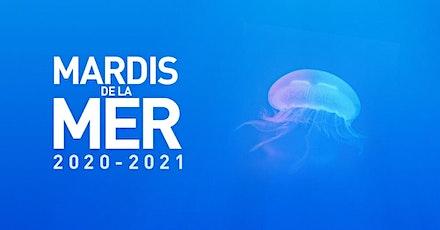 Les Mardis de la Mer 2020-2021 billets