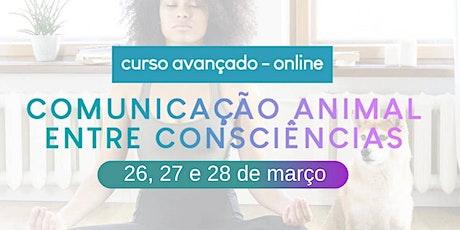 Curso Avançado Comunicação Animal entre Consciências - online / março ingressos