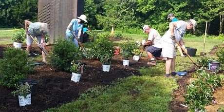 Maximizing Your Movements in the Garden - Virtual Workshop tickets